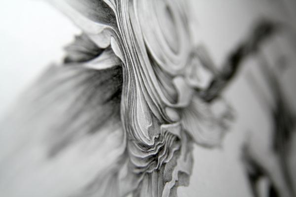 flor02.jpg