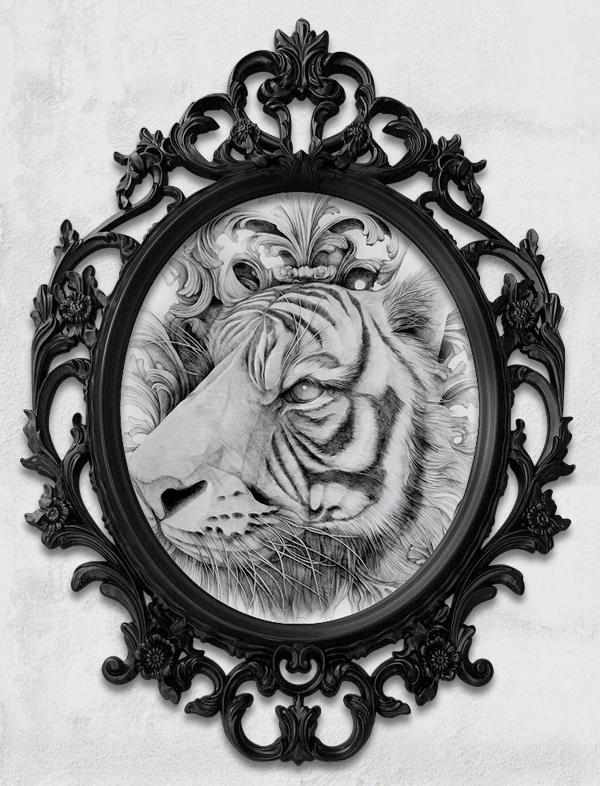 d_tiger