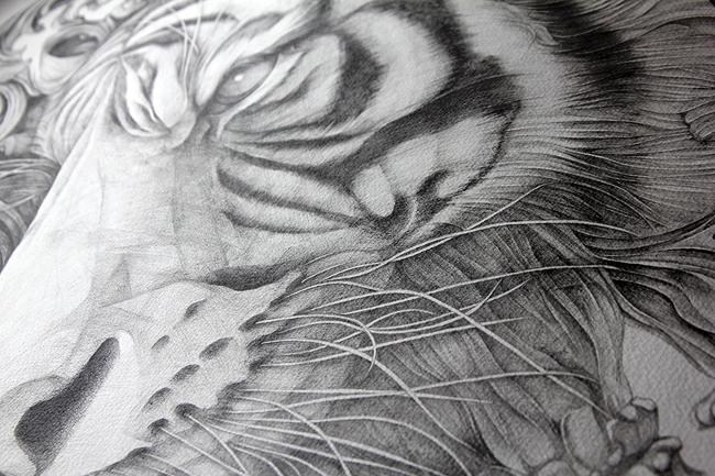 d_tiger2